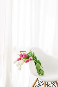 Tulips draped over a white chair